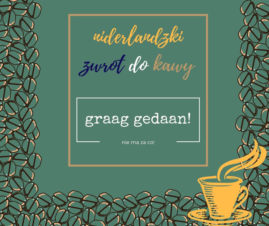 niderlandica, niderlandzki, nauka niderlandzkiego