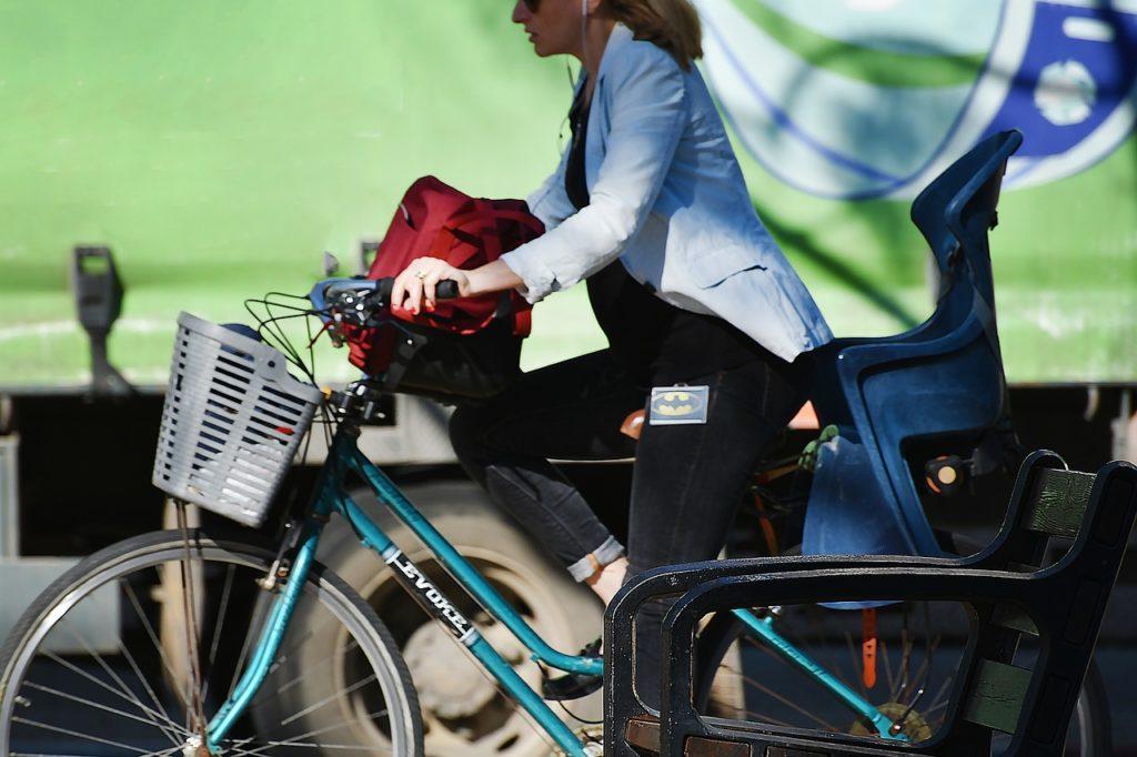 rower, niderlandica