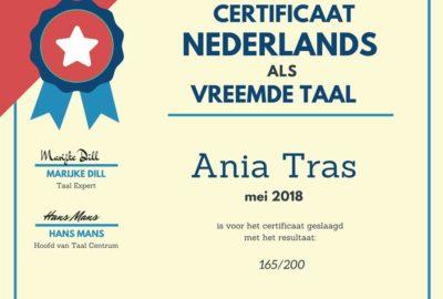 niderlandica, certyfikat, cnavt, holenderski, flamandzi, niderlabdzki, nauka języka, egzamin, holandia, belgia, lowaniun, leuven
